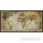 Global Gallery 'Anima Mundi' by Joannoo Framed Graphic Art on Canvas VHY39349