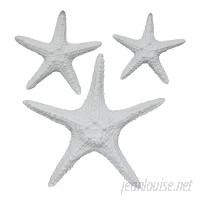 Fetco Home Decor Yelton 3 Piece Starfish Wall Décor Set FHK2325