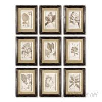 One Allium Way Framed Graphic Art Set OAWY6032