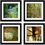 Red Barrel Studio 'Magical Forest' 4 Piece Framed Photographic Print Set RDBT6893