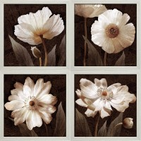 Star Creations 'Paisley Poppies' by Keith Mallet 4 Piece Framed Graphic Art Print Set QARC1722