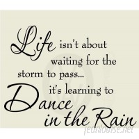 VWAQ Life Isn't about Waiting for the Storm to Pass Wall Decal VWAQ1092