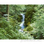 """Brewster Home Fashions Ideal Decor Waterfall in Spring 144' x 100"""" Wall Mural BZH2082"""