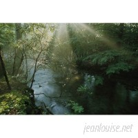 Brewster Home Fashions National Geographic Forest Stream with Sunbeams 72' x 48 Wall Mural BZH3708