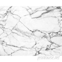Mercer41 Kirksey Marble 9.8' L x 94 W 6-Panel Wall Mural BZH10956