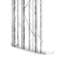 SimpleShapes Birch Tree Floral and Botanical Wall Mural SSHA1165