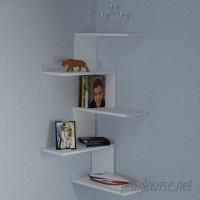 Latitude Run Huddle Modern Wall Shelf LDER3785