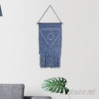 Bungalow Rose Triangle Macrame Wall Hanging BGRS6607