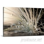 """Canvas On Demand """"Pearls"""" Photographic Print on Wrapped Canvas CAOD3751"""