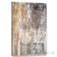 Trent Austin Design 'Stone Abstract III' Graphic Art Print on Canvas TRNT1727