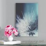 Willa Arlo Interiors 'Morning Sonata' Photo Graphic Print on Canvas WRLO6743