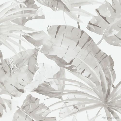 Mercury Row Valenzuela 33' x 20.8 Tropical Natural Leaves Wallpaper Roll MCRW6711