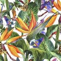Walls Need Love Anna Removable 5' x 20 Floral Wallpaper WANL3248