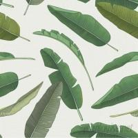 Walls Need Love Banana Leaf 8' x 20 Botanical Wallpaper Roll WANL1222