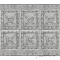 Astoria Grand Luong Vintage 9' L x 18 W Peel and Stick Wallpaper Roll ASTD2539