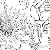 Brayden Studio Malbon Botanical Garden Hand Drawn Flowers Art 4 Piece Peel and Stick Wallpaper Panel BYST8509