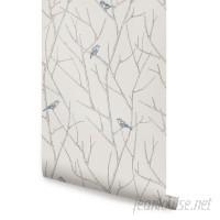 Ophelia Co. Kallas Branch Birds 4' L x 24 W Peel and Stick Wallpaper Roll OPCO6778