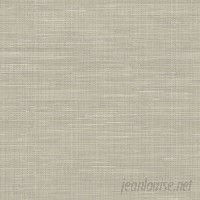 WallPops! Grasscloth Peel and Stick 18' x 20.5 Wallpaper Roll WPP2524