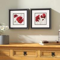 Alcott Hill 'Red Poppy' 2 Piece Framed Print Set ALTH2375