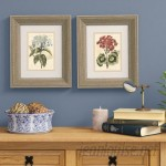 Alcott Hill Bouquet III and IV 2 Piece Framed Painting Print Set ACOT2533