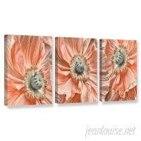 ArtWall 'Poppyscape' by Cora Niele 3 Piece Photographic Print on Wrapped Canvas Set JJM8563