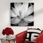 Ebern Designs 'Lotus II' Photographic Print EBDG2349