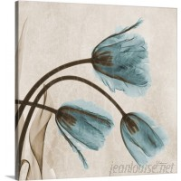 Great Big Canvas 'Tulip X-Ray by Albert Koetsier Photographic Print GRNG3348