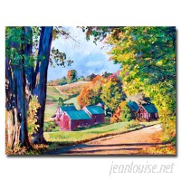 Trademark Art Road to Jenne Farm, Vermont by David Lloyd Glover Framed Painting Print on Wrapped Canvas TMAR7492