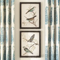 Darby Home Co Maisly Bird 2 Piece Framed Graphic Art Print Set on Wood in Blue/Brown DRBC1803