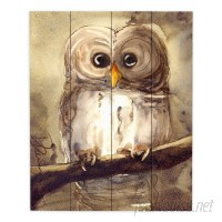 DiaNocheDesigns Redbird Cottage Owl by Dawn Derman Painting Print Plaque DNOC1145