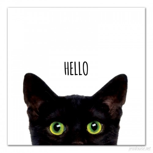 East Urban Home 'Curious Hello Black Cat' Graphic Art Print on Canvas ESUM1252