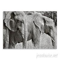 East Urban Home 'Silver Elephant' Photographic Print HACO3034