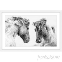 Marmont Hill 'Horse Pair' Framed Photographic Print on Paper MAAX5038