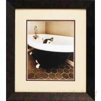 Artistic Reflections Kitty III by Dratfield, Jim Framed Photographic Print AETI1676