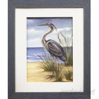 Star Creations Shore Bird II by Ethan Harper Framed Painting Print QARC1505