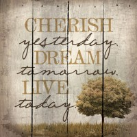 Artistic Reflections 'Cherish Yesterday. Dream Tomorrow. Live Today.' by Tonya Gunn Textual Art on Plaque AETI2800