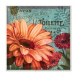 Stupell Industries 'Colorful Daisies with Antique French Backdrop' Textual Art Wall Plaque VYH2823